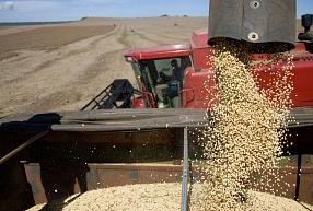 """""""Baltic Agro"""": Atrast labu tirdzniecības menedžeri ar agronoma izglītību kļūst arvien grūtāk"""