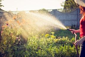 Pareiza laistīšana – skaista, zaļojoša dārza pamats