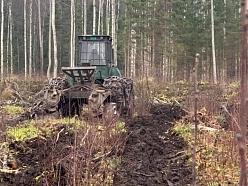 Mežizstrādes pakalpojumi: forvarders, kniebējgalvas, šķeldošana, apauguma attīrīšana.