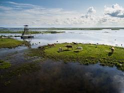 Engures ezera dabas parks