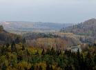 Siguldā un Gaujas senielejā ir sācies zelta rudens