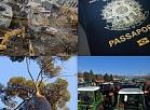 Pasaules notikumi fotogrāfijās (5.-11.februāris)