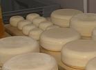 Siera ražošana – perspektīva piena pārstrādes iespēja