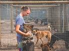 """""""Ulubelē"""" grūti vasarā padzirdīt izslāpušos suņus un viņi sauc palīgā brīvprātīgos"""