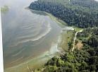 """Alūksnes ezerā sākusies pastiprināta aļģu """"ziedēšana"""""""