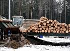 """SIA """"Rīgas meži"""" kokzāģētava """"Norupe""""."""
