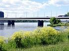 Salu tilts.