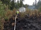 Kūdras un meža ugunsgrēks Talsu novada Valdgales pagastā.
