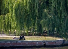 A man rests under a weeping willow tree on the banks of the Spree River in Berlin, as temperatures are to rise until 32 degrees celsius in the German capital on July 04, 2018.