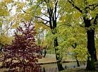 Rīgas kanālmala rudenī.