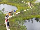 Ķemeru nacionālā parka Lielā Ķemeru tīreļa laipa