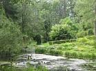Zasas muižas komplekss (parks, dīķis un ūdensdzirnavas)