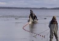 Burtnieka ezera pētnieki izglīto skolēnus