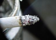 Zemgales reģionā atsavinātas 343445 nelegālās cigaretes un 455 litri alkohola