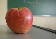 Skolotāju streika laikā Talsu novada mācību iestādes būs atvērtas