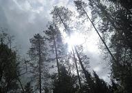 Kurzemē fiksēti vairāki siltuma rekordi