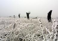 Šogad aukstums prasījis 36 cilvēku dzīvības