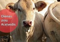 """Piensaimniekiem piešķir pabalstu,nosvinēti """"Saldum - 160"""", Madonas skolas turpinās tiesāties"""