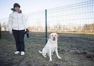 Liepājā aprīkots jaunais suņu pastaigu laukums Ezerkrastā