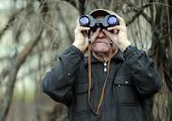 Ventspilī notiks putnu vērošanas pārgājiens