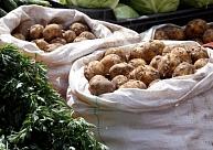 Eksperti: Pagājušās sezonas vietējie dārzeņi no veikalu plauktiem šogad varētu pazust agrāk nekā ierasts