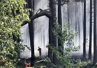 Latvijā piektdien sāksies meža ugunsnedrošais laikposms