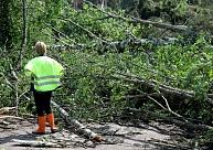 Apdrošinātāji: Visvairāk atlīdzību pieteikumu par vētras postījumiem saņemti no Kurzemes