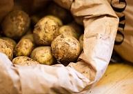 """Kartupeļu cietes ražotāja """"Aloja-Starkelsen"""" apgrozījums pagājušajā finanšu gadā saruka par 1,7%"""