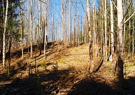 Tiek pētīti un atklāti arvien jauni pilskalni Latvijā