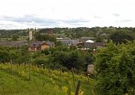 Sabiles Vīna kalns – vīna ražošana jau Livonijas laikos