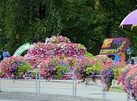 Zinību dienā Valmieru rotās ziedu dekori