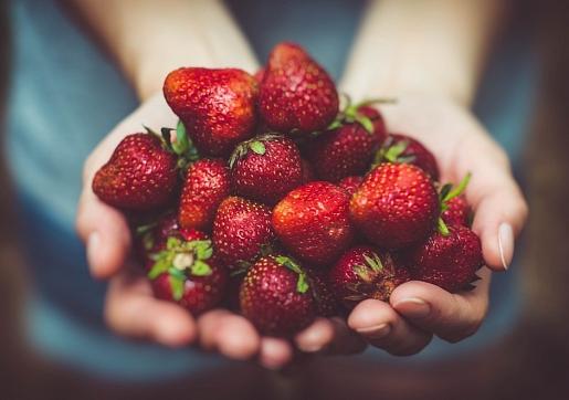 5 veselīga un droša uztura pamatprincipi vasarai: Iesaka uzturzinātniece