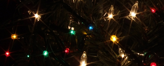 16 ģimenes kopā ar Valsts prezidentu iedegs Melngalvju nama Ziemassvētku egli