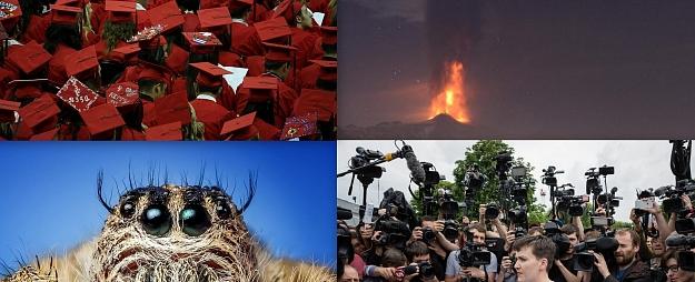 Pasaules notikumi fotogrāfijās (20.-26.maijs)