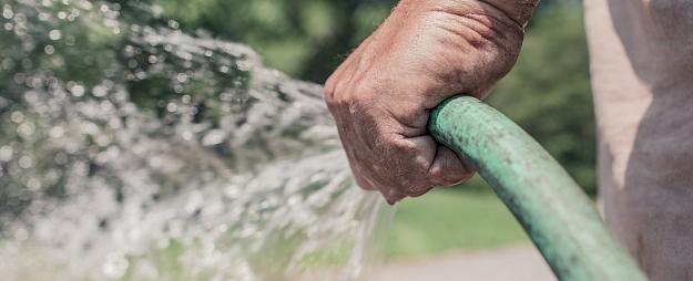 Laistīšanas ābece. Cik ūdens nepieciešams dažādiem augiem?