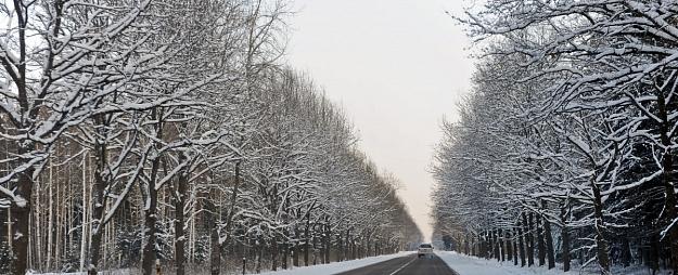 Braukšanu pa Latvijas ceļiem vietām apgrūtina apledojums, vietām - avārijas