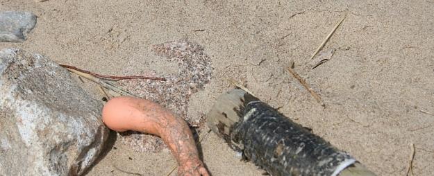 Kurzemē mazulim konstatē ribu lūzumus un zilumus; tēvs apgalvo, ka bērnu pārāk cieši apskāvis