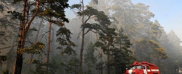 Ugunsbīstamība mežos sasniedz augstu līmeni