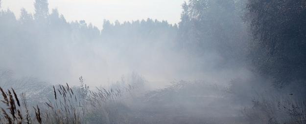 Valdgales pagasta plašā meža ugunsgrēka sadūmojums un smaka sasniegusi Saldu