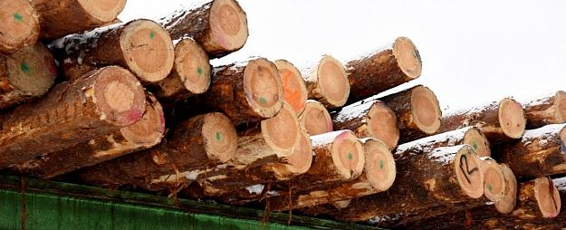 Krities kokapstrādes uzņēmuma