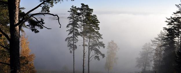 Vietām Latvijā sabiezējusi migla