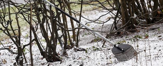 Svētku brīvdienās brīžiem snigs un gaidāma svārstīga gaisa temperatūra