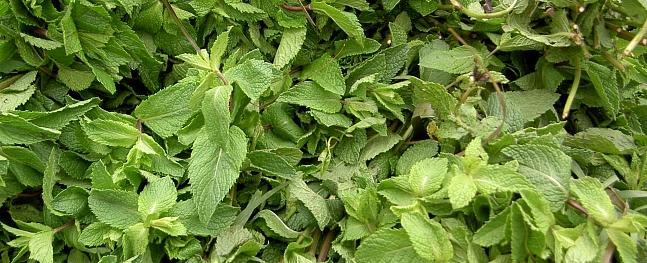 Augos ieslēptā smarža. Gatavojam aromātu maisiņus