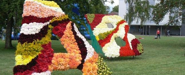 Valmieras centrā izvietos ziedu kompozīcijas