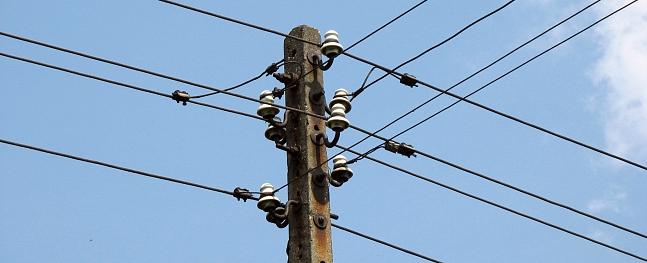 """Elektropārvades trašu tīrīšanu Cēsu nodaļā iegūst """"Eko Celtne"""" un """"MVR Lux"""""""