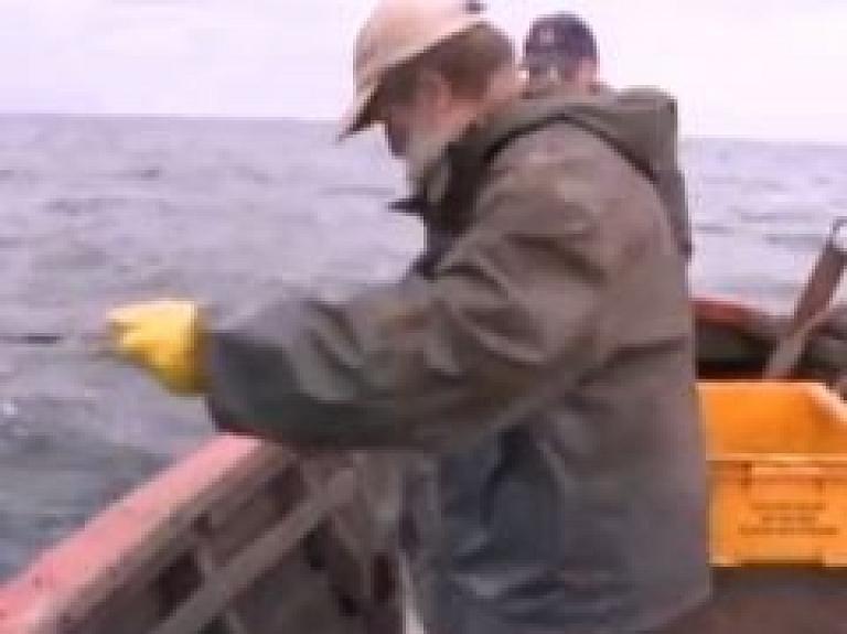 Jūrā nogremdētie ieroči izraisa mutācijas