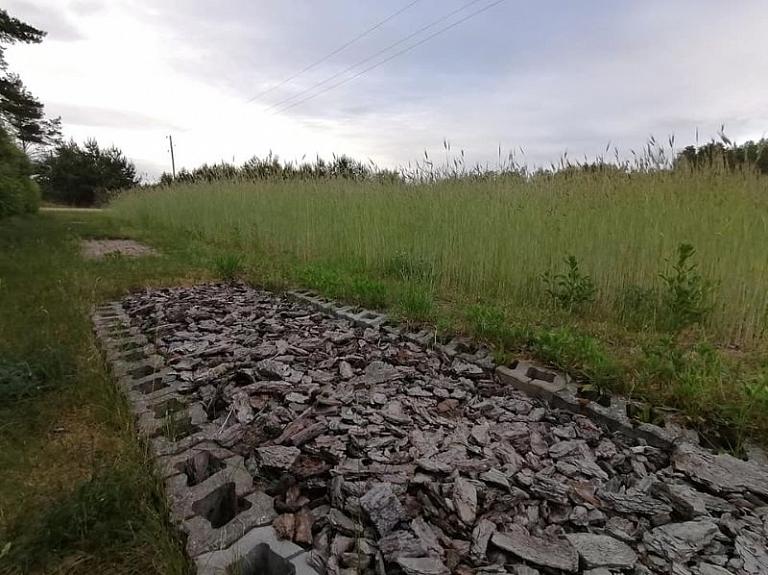 Purviču baskāju taka pašā dāliju lauka malā