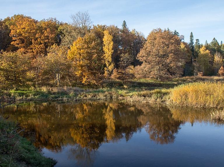 Juris Seņņikovs/flickr.com
