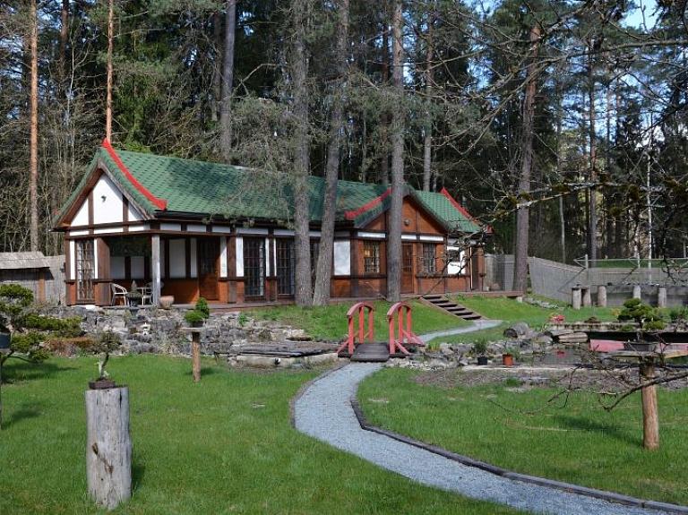 Bonsai kopšanas māksla un nesteidzīga atpūta tepat Latvijā – Bonsai parkā Inčukalnā