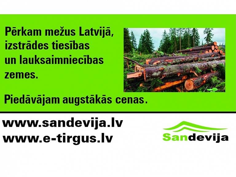 """SIA """"Sandevija"""" – operatīva meža īpašumu novērtēšana, mežu un cirsmu iegāde par labāko cenu"""